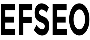 EFSEO - Easy Frontend SEO